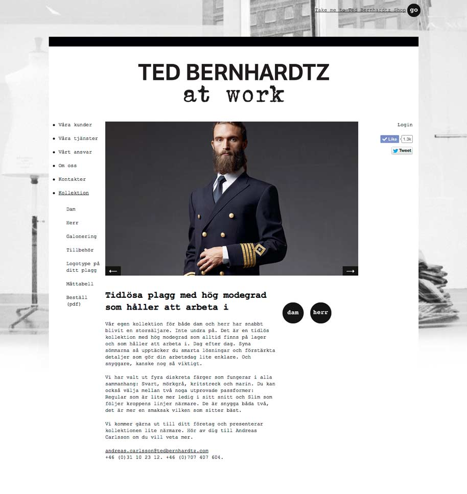 Ted_b_at_work_website_03