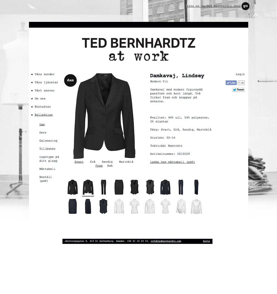 Ted_b_at_work_website_07