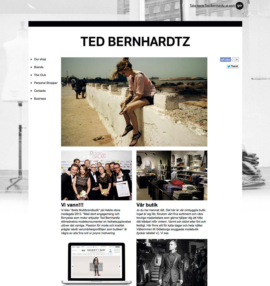 Ted_b_website_02